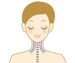 正常な頚椎